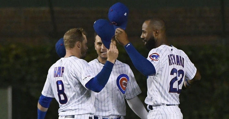 Who will play CF for the Cubs in 2020 (David Banks - USA Today Sports)