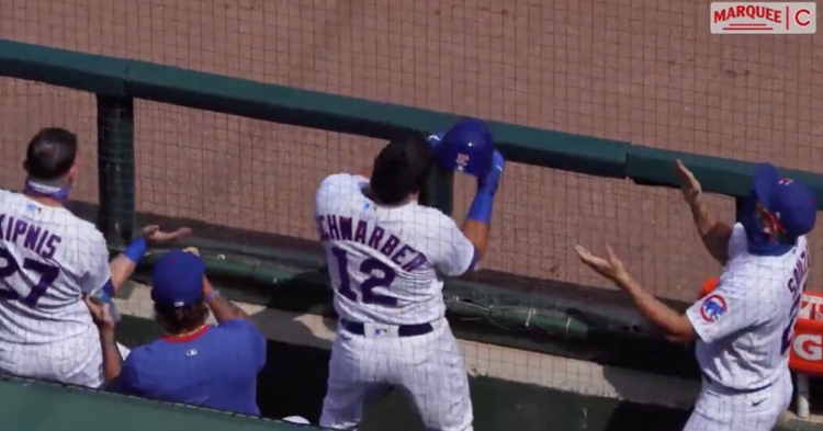 Members of the Cubs' dugout love to dance along to Anthony Rizzo's catchy walkup songs.