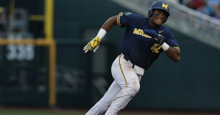 Nwogu is a talented prospect for the Cubs (Bruce Thorson - USA Today Sports)
