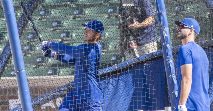 Bryzzo getting back to work at Cubs Camp (Patrick Gorski - USA Today Sports)