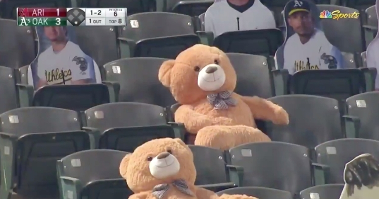 A giant, bowtie-wearing teddy bear could only helplessly watch as a foul ball plummeted toward its noggin.