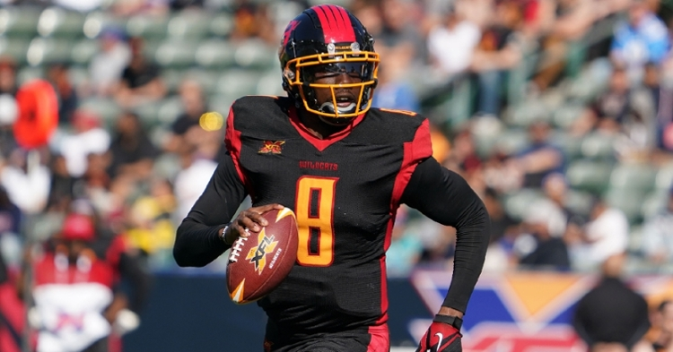Josh Johnson has had a long career in the NFL (Kirby Lee - USAT)