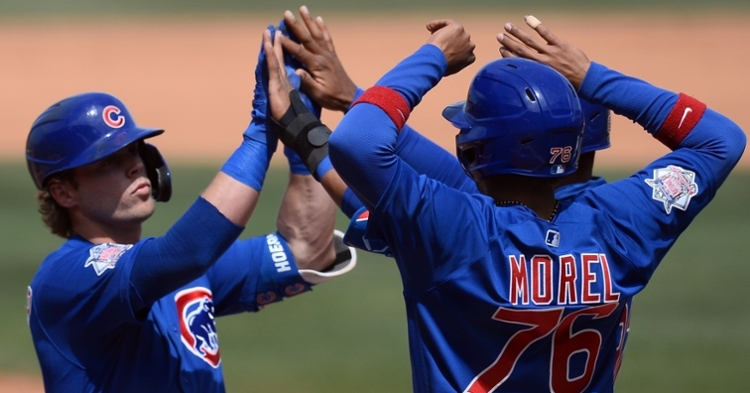 Hoerner and Morel are two big pieces of the Cubs future (Joe Camporeale - USA Today Sports)