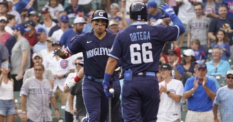 Chirinos has landed on the 10-day IL list (David Banks - USA Today Sports)