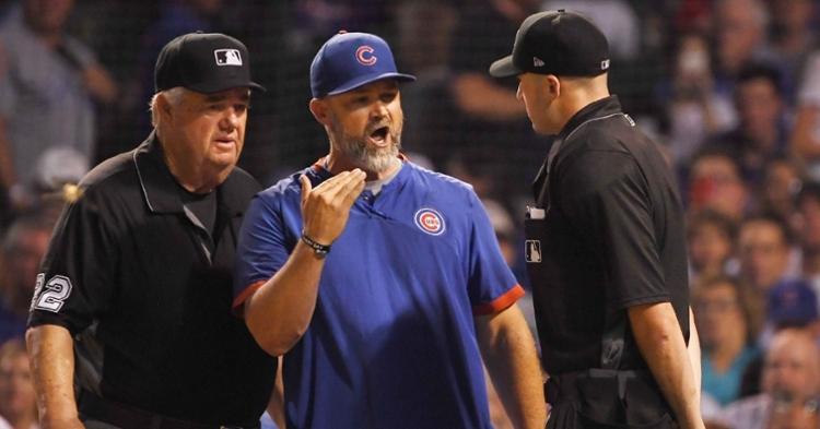 Ross got ejected after arguing balls and strikes (Quinn Harris - USA Today Sports)